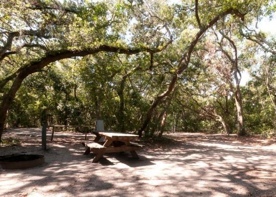 Anastasia State Park Saint Augustine Fl Gps Campsites