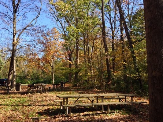 Hamilton county park winton woods campground cincinnati for Winton woods cabins