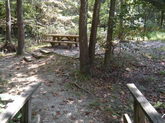 Daniel Boone National Forest Zilpo Recreation Area Salt