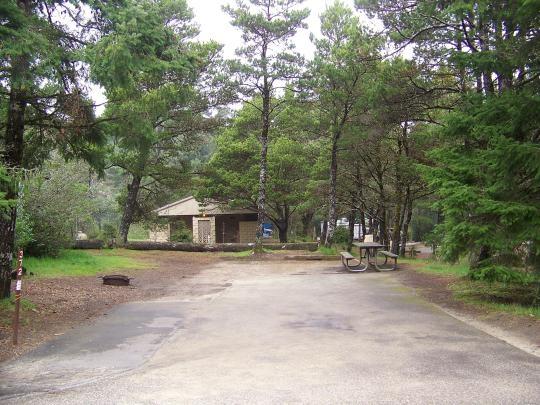Jessie M Honeyman State Park Florence Or Gps