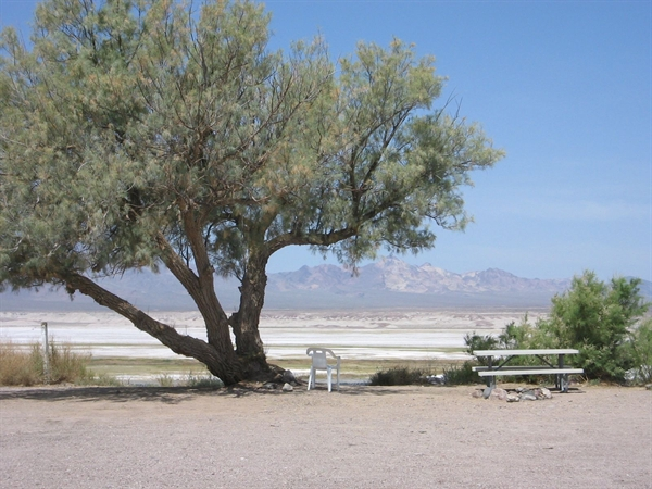 Inyo County Park Tecopa Hot Springs Campground, Tecopa, CA ...