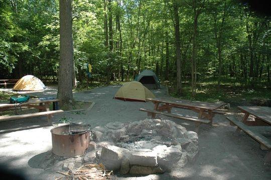 Elizabeth Furnace Group Camp 43