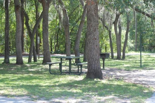 Ocala National Forest Salt Springs Campground Salt