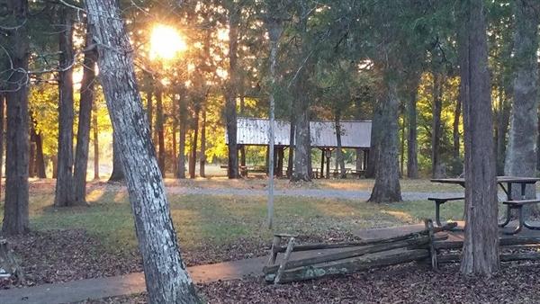 Cedars of lebanon state park lebanon tn gps campsites for Tnstateparks com cabins