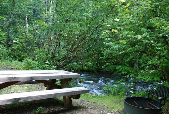 Willamette national forest roaring river group campground for Roaring river fishing hours