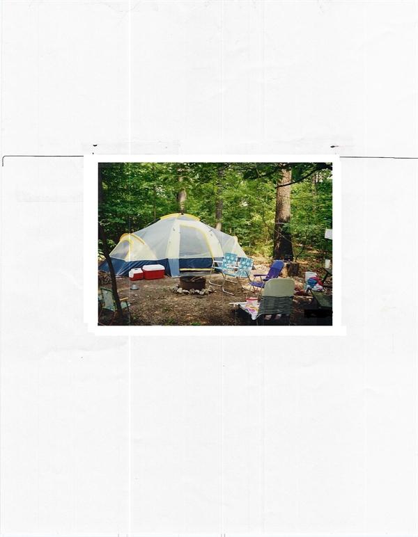 Shady Oaks Campground And Rv Park Harrison Ar Gps