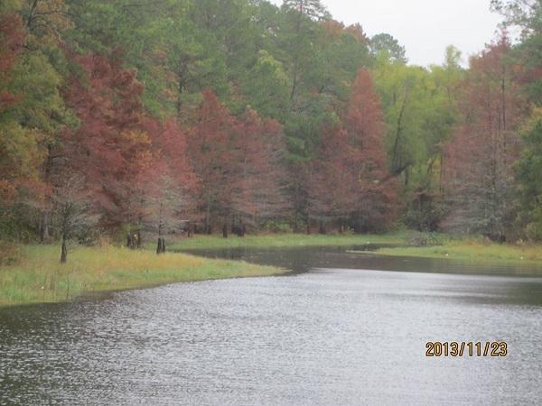 South Toledo Bend State Park Anacoco La Gps Campsites
