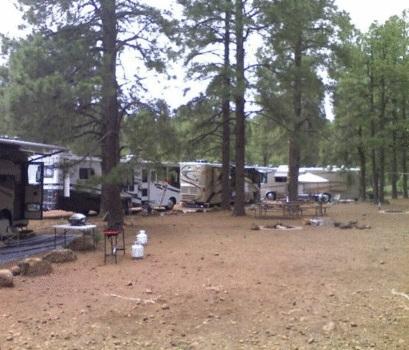 Prescott National Forest Mingus Mountain Campground ...