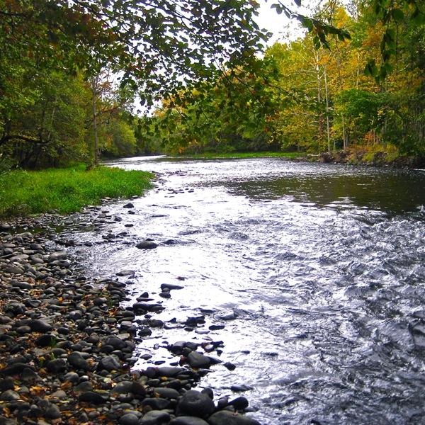 Hookup New Baldwin Park: Deerpark / New York City NW KOA, Cuddebackville, NY