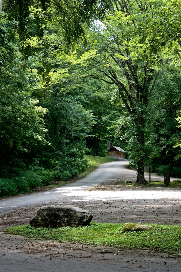 Daniel Boone National Forest Bee Rock Campground London