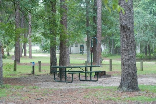 Ocala National Forest Salt Springs Campground Salt