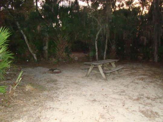 LocationPhotoDirectLink G34518 D1407952 I58210178 Oscar Scherer State Park Osprey Florida in addition LocationPhotoDirectLink G34518 D1407952 I166480358 Oscar Scherer State Park Osprey Florida additionally Nokomis Hotels Valerie Beach House h16192385 furthermore Oscar Scherer State Park likewise Oscar Scherer Park Florida State Parks. on oscar scherer state park reviews