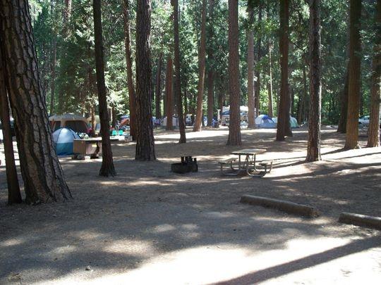 Yosemite National Park North Pines Campground Yosemite