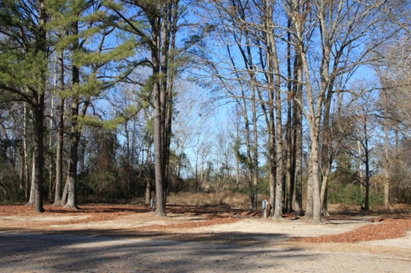 Bass Lake Campground, ...I 95 Exit 193 South Carolina