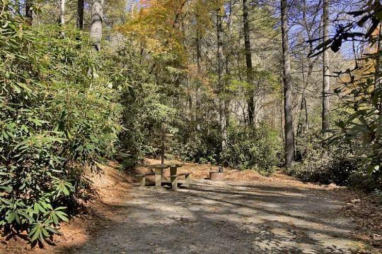 Nantahala National Forest Van Hook Glade Campground