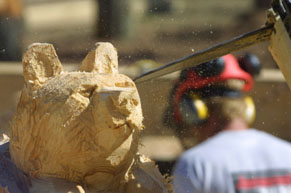 A wooden bear being carved with a chainsaw