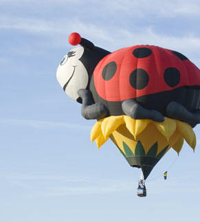 Lady bird shaped balloon