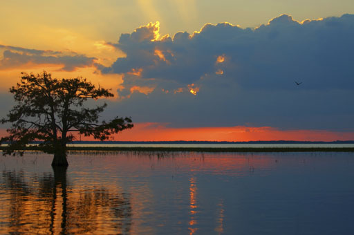 Sunset over Everglades National Park