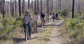 People bike riding the Long Pine Key Trail