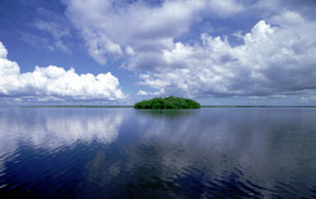 Where Is The Ten Thousands Islands Place To Stay