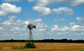 Windmill in wheat field, Oklahoma