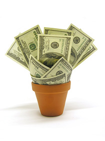 Flower pot containing money