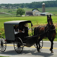 Horse and buggy in Amish Country