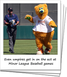 Minor League Baseball Mascot