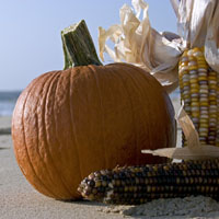 Pumpkin on a beach