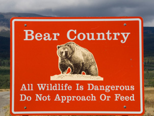 Sign warning of bears