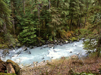 Boulder River from Boulder River Trail