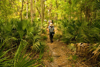 People hiking on the Florida Trail