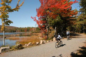 Bikers riding in the fall on the carriage road in Acadia National Park