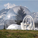 BubbleTree tent with mountains behind