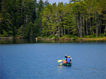 Canoeing at Jessie M. Honeyman State Park