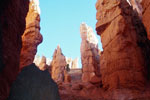 Wall Street - Navajo Trail, Bryce Canyon National Park