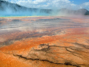 Hot Spring at Yellowstone National Park