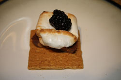 Chocolate blackberry smore