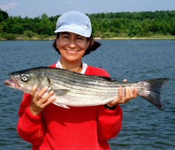 Woman holding a striped bass