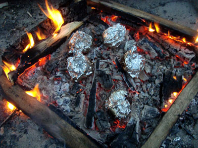 Cooking in Foil