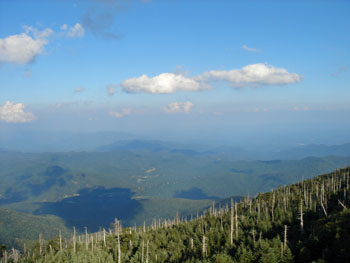 View from Mount Mitchell State Park, highest point East of the Mississippi River
