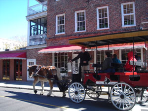Horse drawn carriage, Charleston, South Carolina
