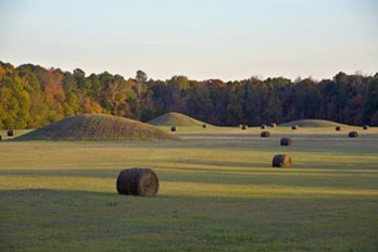 Pharr Mounds, Natchez Trace Parkway