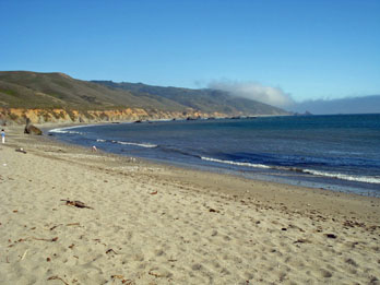 Beach and coastline at Andrew Molera State Park