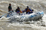 Couple whitewater rafting on the San Juan River, Colorado