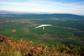 Hang glider soaring over green valley