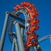 Orange roller coaster doing a loop against a blue sky
